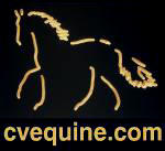 Cumberland Valley Equine Service